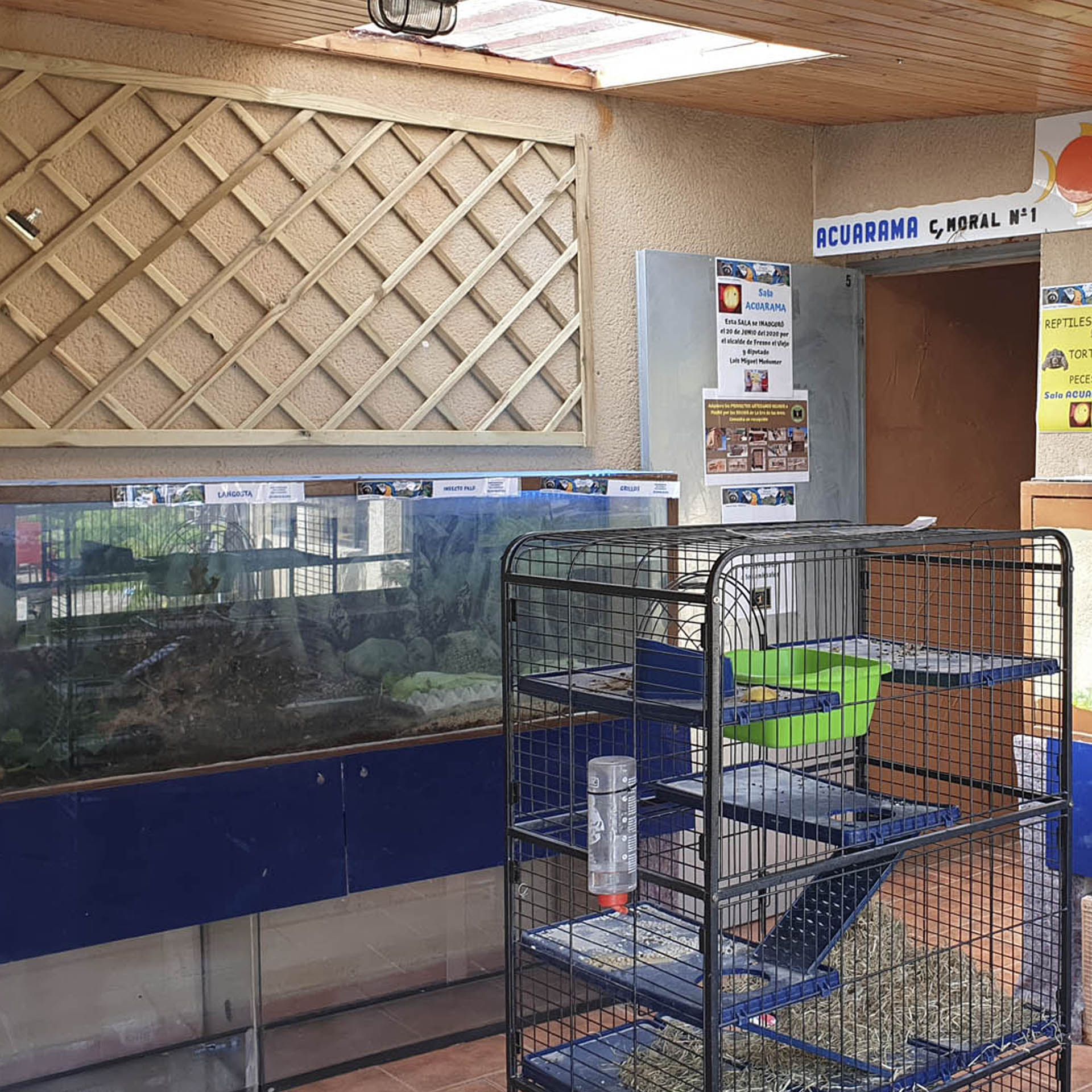 sala peces zoo, sala acuarama, la era de las aves